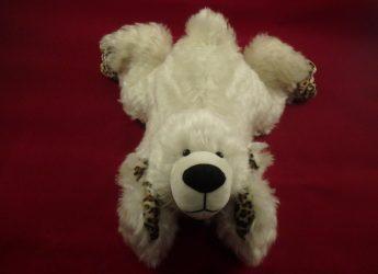 Namika, der erste Simo-Bär nach der Auszeit!
