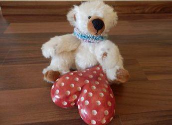 Kleiner Bär- großes Herz!