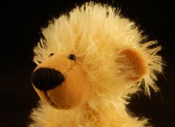 """Noch ein """"Teddyschnittbär"""""""